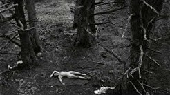 Wynn Bullock - Master photographer