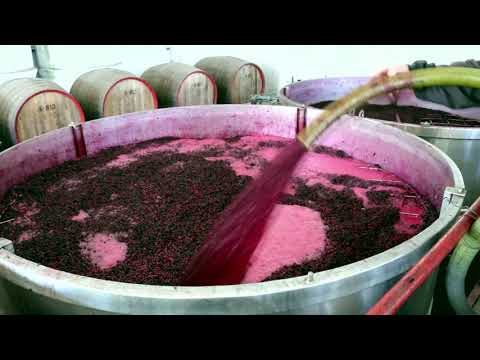 DCFTA for Moldovan winemakers
