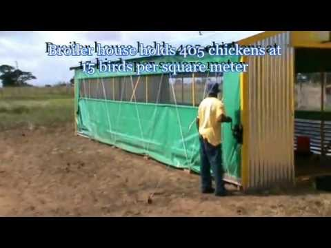 Small Chicken House Paid For With Government Grant Youtube