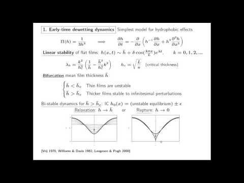 Tom Witelski - Multiscale Dynamics Of Dewetting Fluid Films
