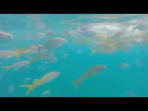 Varadero Cuba Havana Santa Clara, Cienfuegos, Trinidad diving and dance.Wycieczka wakacje Kuba