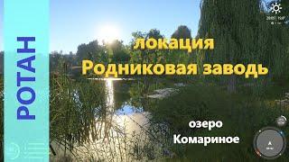 Русская рыбалка 4 озеро Комариное Ротан в камышах