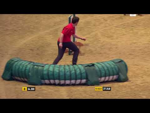The Kennel Club Large Senior Dog Agility Semi Finals at Olympia 2017