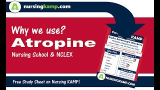 What is Atropine Bradycardia ACLS Cardiac Medications Atropine NCLEX Meds Nursing KAMP 2019