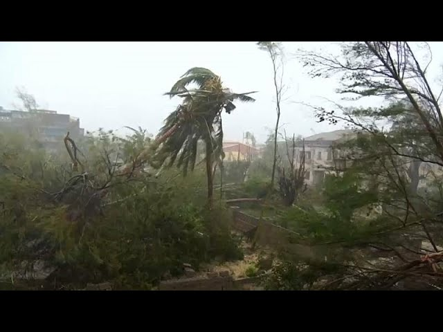 <span class='as_h2'><a href='https://webtv.eklogika.gr/anthropistiki-krisi-sti-mozamviki-meta-ton-kyklona' target='_blank' title='Ανθρωπιστική κρίση στη Μοζαμβίκη μετά τον κυκλώνα'>Ανθρωπιστική κρίση στη Μοζαμβίκη μετά τον κυκλώνα</a></span>