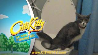 Cat Toilet Training - CitiKitty Success