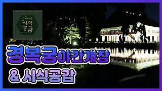 나홀로 경복궁야간개장 & 시식공감  브이로그 /…