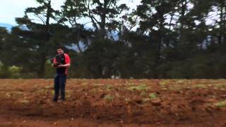 Soil Cultivator Breaking Down The Soil For Mountain Harvest Foods Potatoes