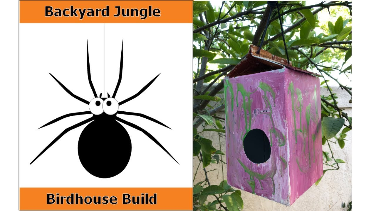 Tiger BackYard Jungle Birdhouse Build