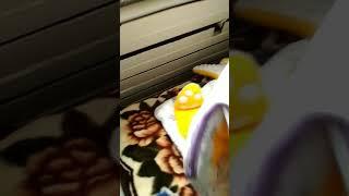 Слипик, детский спальный мешок