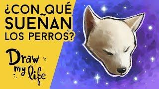 ¿QUÉ SUEÑAN LOS PERROS? - Question Draw