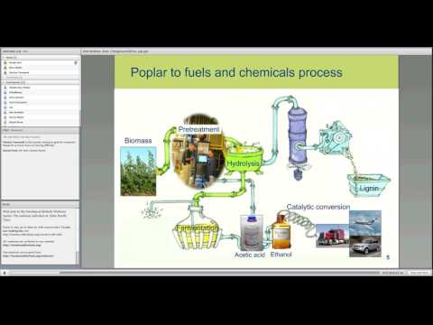 Webinar - Out of the Lab! Converting Poplar into Biofuels: Graduate and Postdoc Research