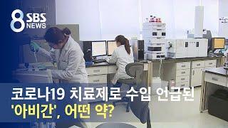 코로나19 치료제로 수입 언급된 일본 '아비간', 어떤 약? / SBS