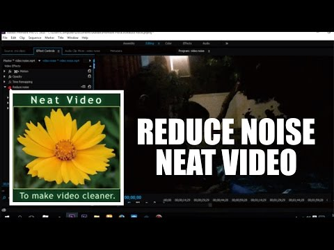 Download dan Install Reduce Noise Neat Video Full