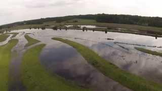 Hoogwater in de Vecht bij Dalfsen