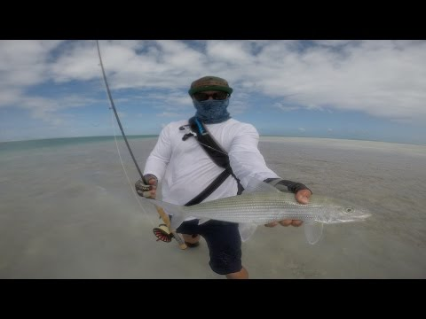 Fly fishing for GT
