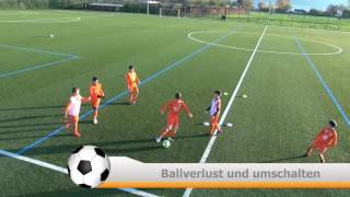 Trainerfortbildung FC Rapperswil-Jona November 2016