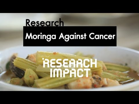 Research On Moringa For Cancer Prevention - Research Impact [by Mahidol]