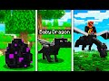 How to Train Your Dragon in MINECRAFT! Pet Ender Dragon