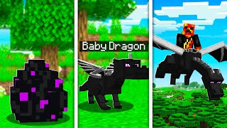 How to Train Your Dragon in MINECRAFT! (Pet Ender Dragon)