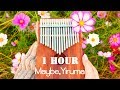 Download lagu Maybe, Yiruma 이루마 - 1 Hour Kalimba 칼림바 cover. Mp3