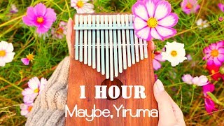 Maybe, Yiruma 이루마 - 1 Hour Kalimba 칼림바 cover.