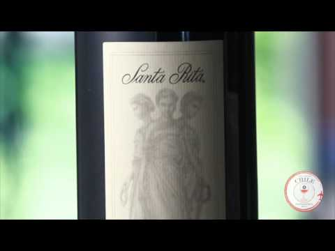 Discover Chile's Oldest Winery, Home To Top-Rated Chilean Wines