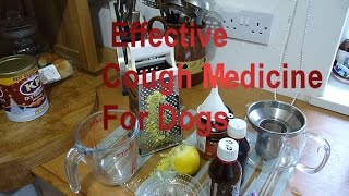 Cough Syrup Medicine For Dogs, Home Made Recipe Highly Effective Remedy for Kennel Cough