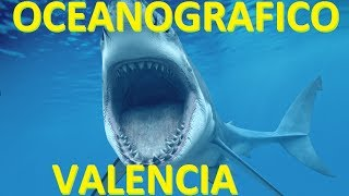 Oceanografico / Oceanografic Valencia