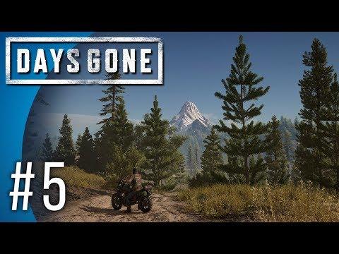 Days Gone #5