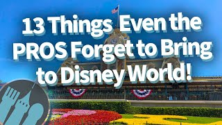 13 Things Even the Pros Forget to Bring to Disney World!