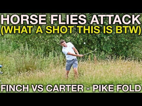 THE HORSE FLIES ATTACK! Finch vs Carter - Pike Fold Part 3
