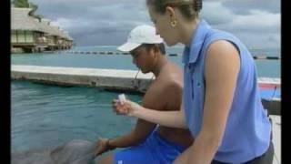 Histoires d'îles - Tahiti (Polynésie Française)