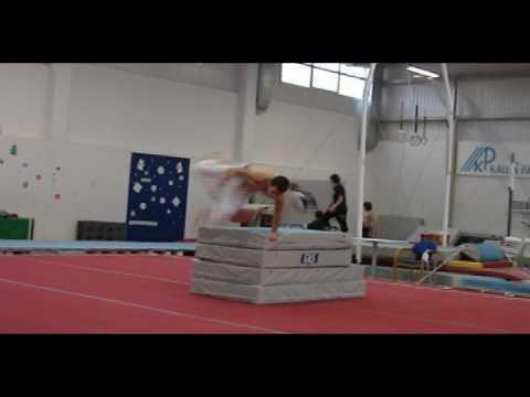 Sw1x -Gym Training (short)