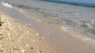 ATHOS ROYAL HOTEL - Pyrgadikia Halkidiki VIDEO 5(The Residential Complex of Water Front Property