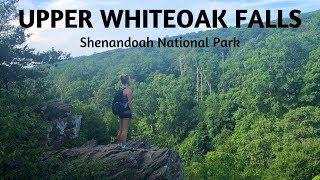 Upper Whiteoak Falls - Shenandoah National Park