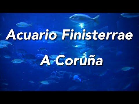 Acuario Finisterrae A Coruña