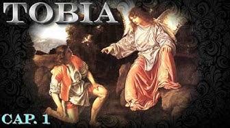 BIBBIA 🔊 Libro di TOBIA - Vecchio Testamento (dizione Benedetto Nardacci)