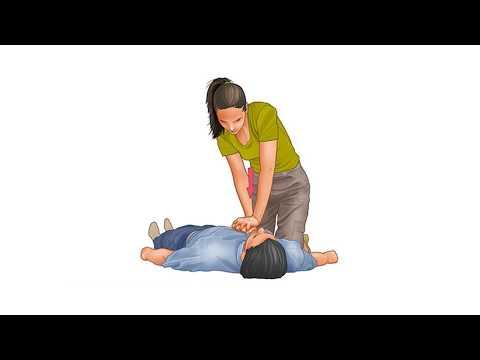 First aid - Cardiopulmonary resuscitation (CPR)