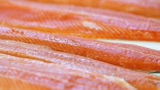Fish Farm of the Future Goes Vegetarian to Save Seafood
