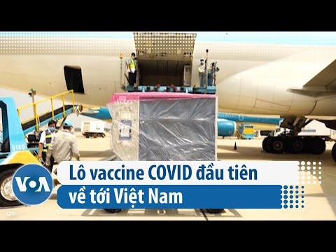Lô vaccine COVID đầu tiên về tới Việt Nam (VOA)