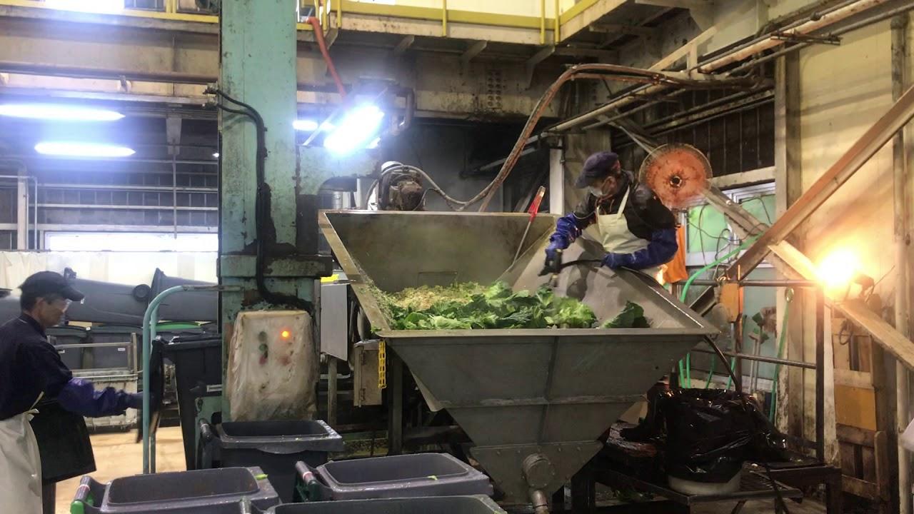 JAPAN FOOD ECOLOGY CENTER,INC