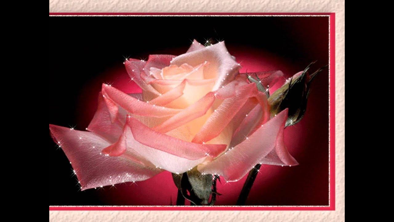 Белые тюльпаны королев