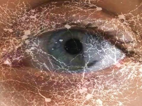 your-motion-sensing-eye-cells----mind-blow-#79