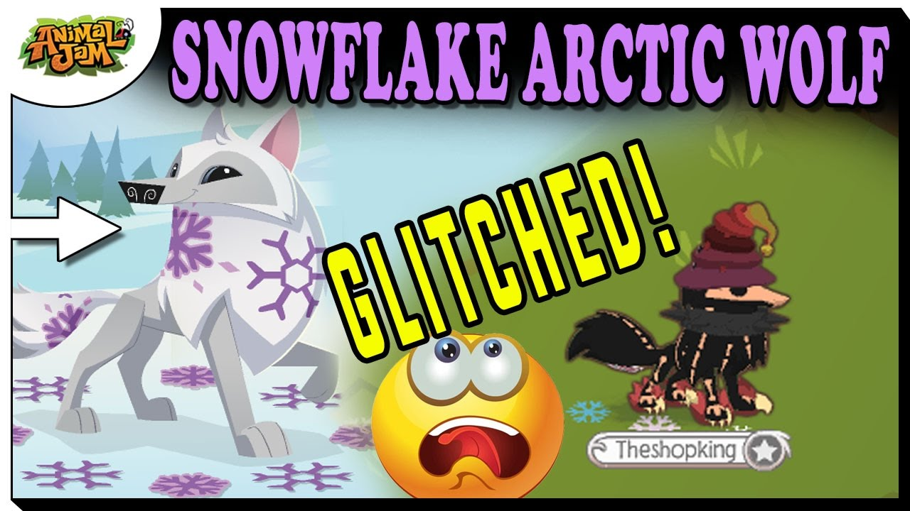 Image of: Spike My New Snowflake Arctic Wolf Is Glitched Animal Jam Update Youtube My New Snowflake Arctic Wolf Is Glitched Animal Jam Update Youtube