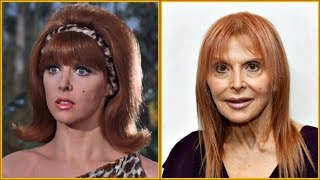 Cover images Gilligan's Island (1964-1967) 🌎 Cast Then and Now 2019