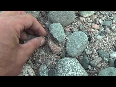 Речные камни смотрю и драгоценные