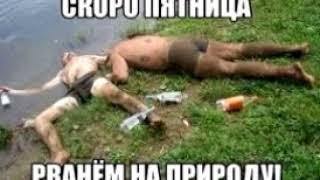 СИНИЙ ГРИНПИС