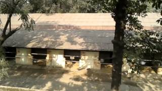 Racer Horse stable  in kolkata (India)