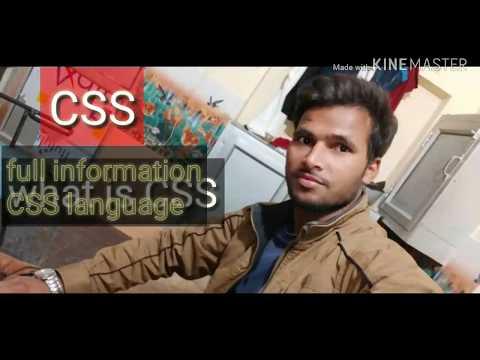 ## CSS## Style Design## HTML## Both Language##website Development## Internet Services## Provided####